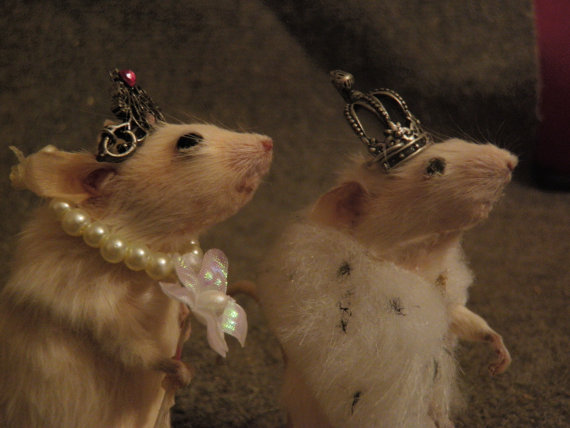 king and queen mice